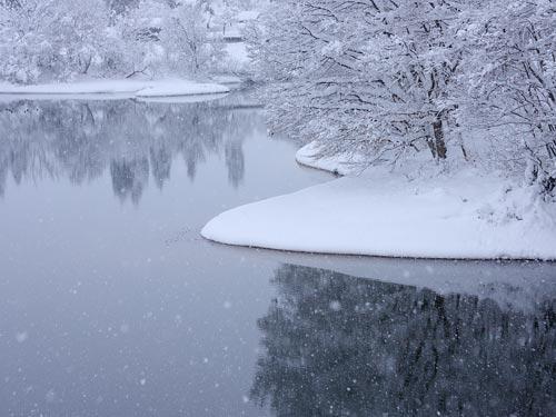 雪の池画像