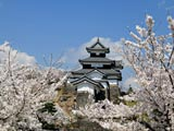 桜咲く小峰城に大震災の傷跡