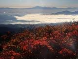 紅葉の秋田駒ヶ岳から早池峰山を望む