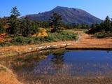 盛秋の千沼ヶ原と岩手山
