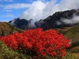 紅葉ナナカマドと剣岳