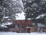 雪降る毛越寺本堂