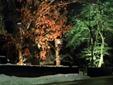 角館武家屋敷冬の夜を照らす