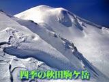 四季の秋田駒ケ岳